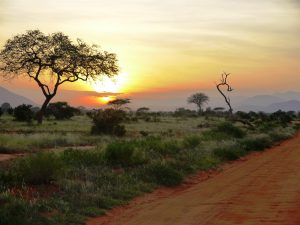 sunset-at-the-tsavo-east-national-park